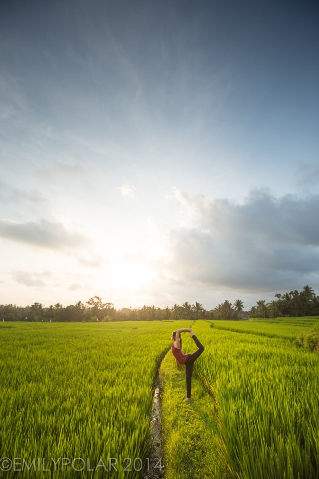 Yoga, Rice Fields, Bali, Ubud, Woman, Dancer,