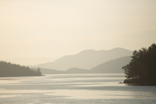 Landscape meets water in the San Juan Islands.