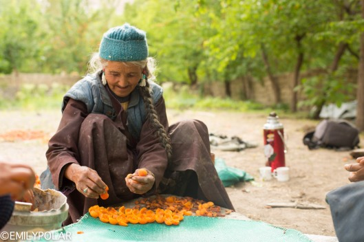 Local women in the village of Takmachik break apricots open for drying.