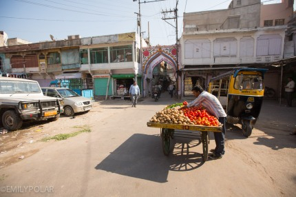 Indian man standing with street cart full of veggies in Jodhpur, Rajasthan.