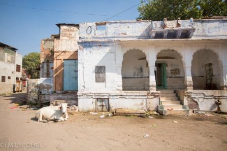 Jodhpur_141130-247