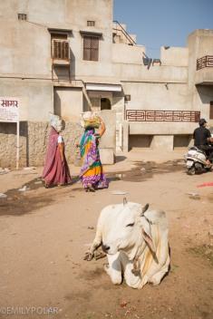 Jodhpur_141130-253