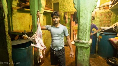 Jodhpur_141130-50
