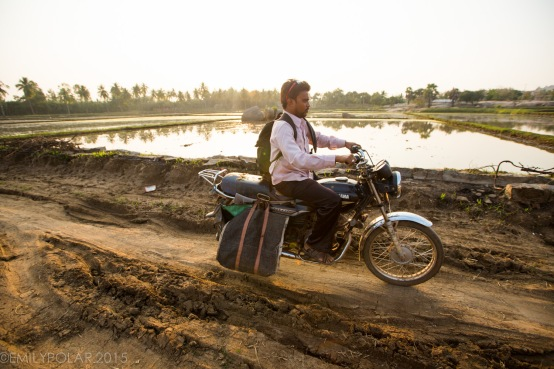 Indian man riding his motorcycle down dirt road next to rice fields in Hampi.
