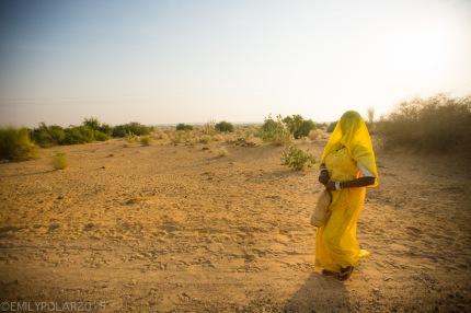 Indian woman wearing a yellow sari walking in the Thar desert, Rajasthan.