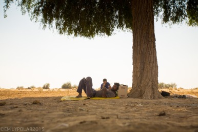 Rajasthani desert guide takes a rest laying down under a tree in the desert outside Jaisalmer.