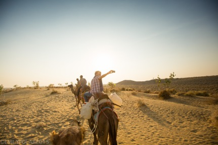 Traveling friends on a camel safari in Thar desert taking pictures and selfies.