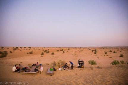 Jaisalmer_Camel_Safari_141202-596