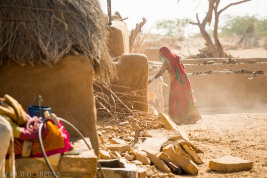 Indian woman wearing red sari works in the dusty sunlight stacking wood while the young ox come out of the mud home in Thar desert.