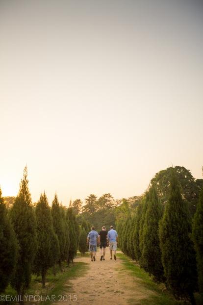 English tourists walking along dirt path among trees and green meadows at Lodi Gardens, Delhi.