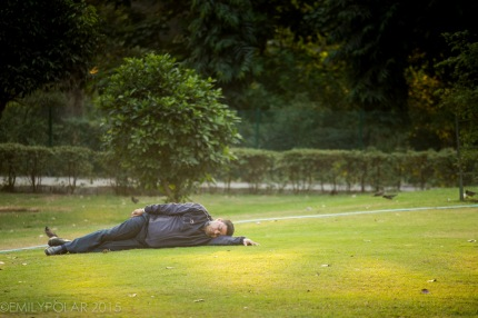 Indian man sleeping on the green grass in Lodi Park in Delhi.