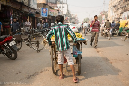 Young Indian boy pushing cart of fruit for sale in Old Delhi, India.