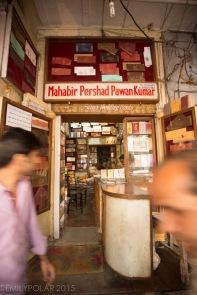 Old_Delhi_141113-266