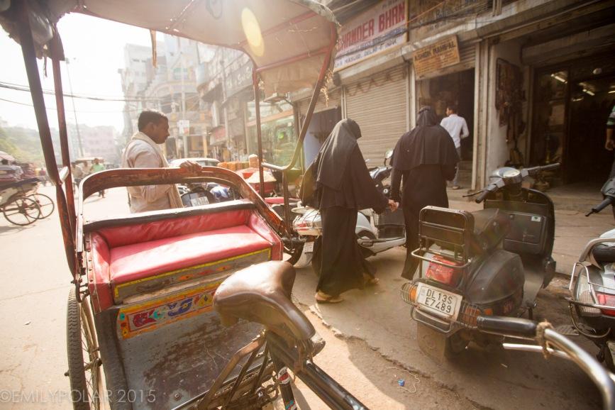 Old_Delhi_141113-56