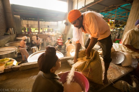 Indian men working as volunteer cooks stirring huge pots in the kitchen cooking for thousands of people at the Golden Temple.