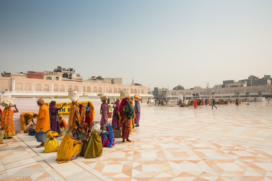 Golden_Temple_141024-118
