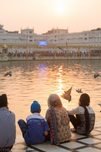 Golden_Temple_141024-332