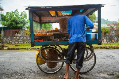 Nepali man selling the best chat from his street food cart in Pokhara, Nepal.
