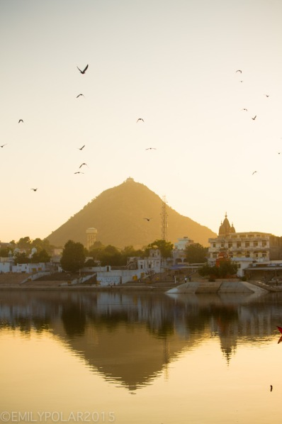 Pushkar lake at sunset with view of the Saraswati Temple reflecting in the lake in Pushkar, Rajasthan.