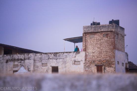 Pushkar_141124-565