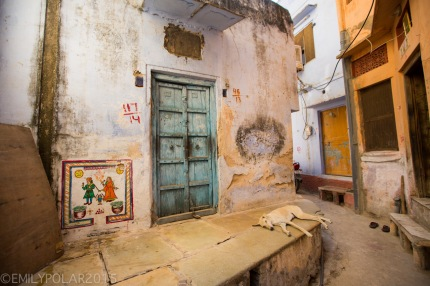Pushkar_141125-42