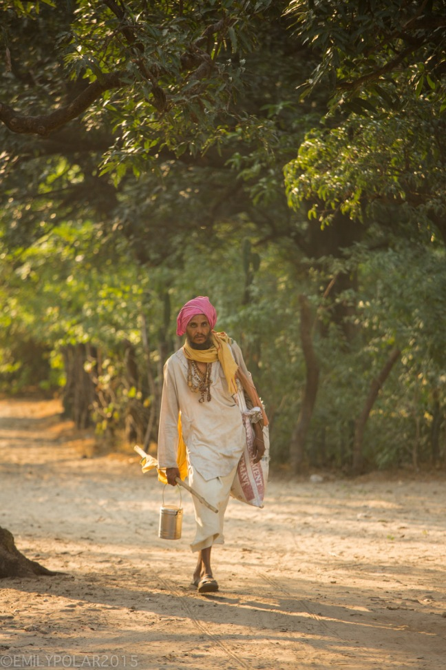 Hindi man walking through the forest along a path into the sunlight in Rishikesh.