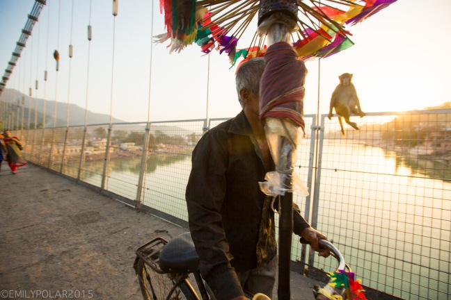 Indian man riding his bicycle across Ram Jhula bridge at sunset with his mobile shop of colorful flags.
