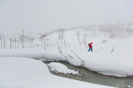 Splitboarder skinning along onsen strem at Chisenupuri in Niseko, Japan.