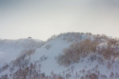 Skiers lining up on a snowy ridge before dropping into their line turning through the powder and trees of Niseko, Japan.