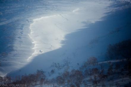 Snowboarder riding the backside of Annupuri getting his fresh powder turns in Niseko, Japan.