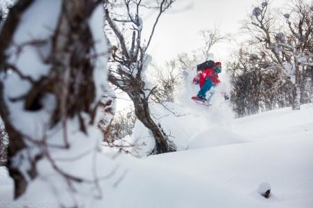 Snowboarder wearing red jacket riding his split board in the fresh powder backcountry near Kiroro Resort, Japan.
