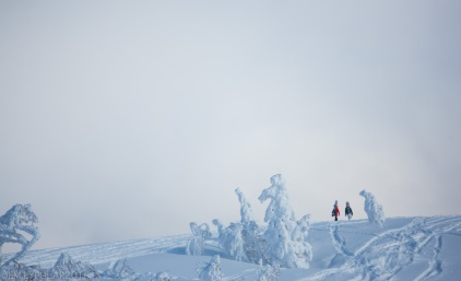 Snowboarders hiking on a snowy ridge in the backcountry of Kiroro Resort in Japan.