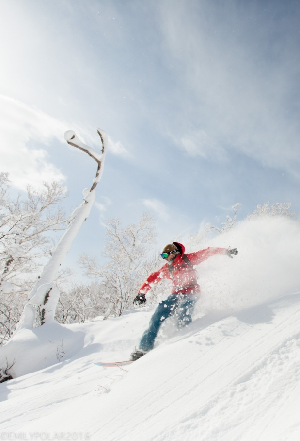Snowboarder riding the fresh powder in Niseko, Japan at Moiwa.