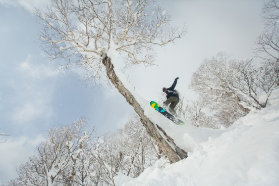 Snowboarder jumping off of powder tree trunk in the deep snow at Moiwa in Japan.