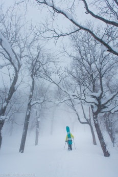 Woman snowboarder snowshoeing in a magical snow forest in the Niimi Backcountry of Japan.
