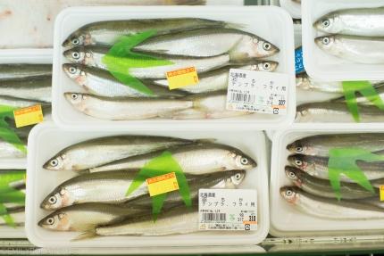 Niseko_160118-60