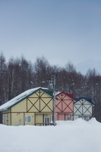 Cute colorful wood cabin homes in the countryside of Hokkaido, Japan.