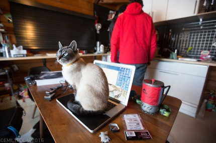 Cat sitting on laptop while boys get ready for a day of snowboarding in Niseko, Japan.