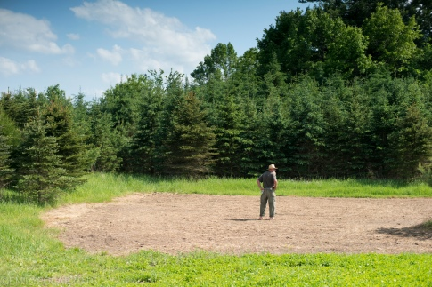 Man walking around his food plot on his land surrounded by trees under a blue sky in Wisconsin.