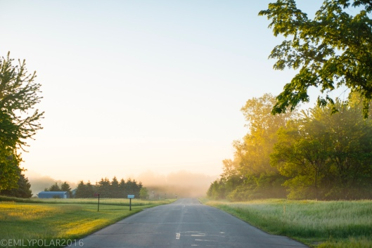 Golden sunrise morning on rural country road lined with grass and trees in Wisconsin.