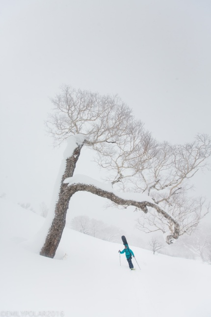 Haruna Kito snowshoeing with her Gentemstick snowboard through the snowy backcountry big trees on Mt. Yotei in Niseko, Japan.