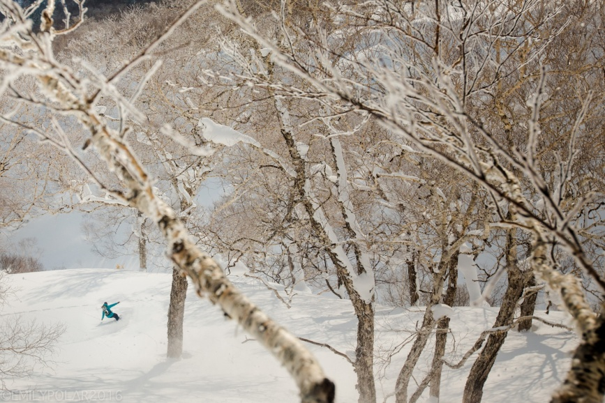 Haruna Kito snowobarding with her Gentemstick through the snowy backcountry big trees on Mt. Yotei in Niseko, Japan.