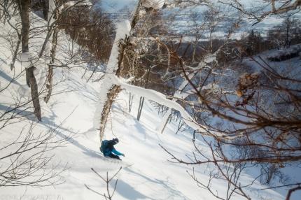 Ken Miyashita snowboarding fresh powder in the trees on Mt. Yotei in Niseko, Japan.
