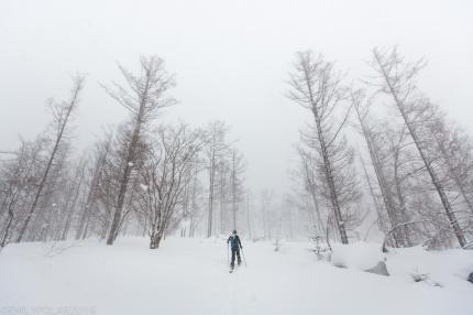 Ken Miyashita skinning on his Gentemstick splitboard through the snowy forests on Mt. Yotei in Niseko, Japan.