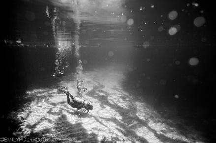 Scuba divers swimming to the caverns at Casa Cenote in Tulum, Mexico.
