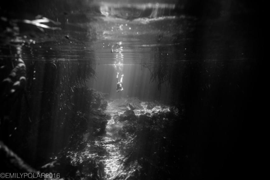 casa_cenote_160720-307