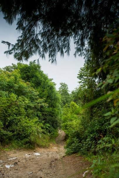 Shivapuri_Mountainbiking_180626-19-2