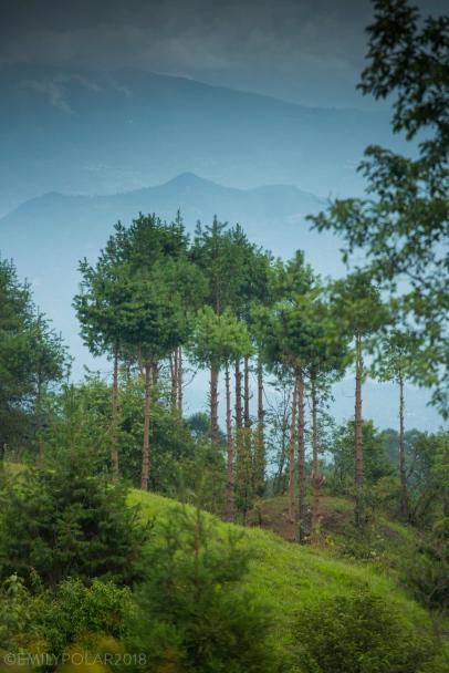 Shivapuri_Mountainbiking_180626-29-2