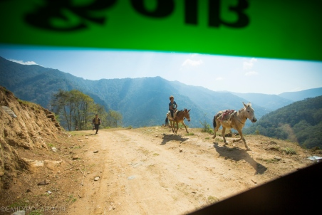 Nepali cowboy chasing their mules and horses down a dirt road near Ghandruk in Nepal.