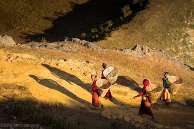 Nepali women carrying traditional baskets made of bamboo called doko. A common sight in any region outside the urban streets of Kathmandu. They are used to carry goods, vegetables, grains and even poultry. They are also used as temporary cages for animals.